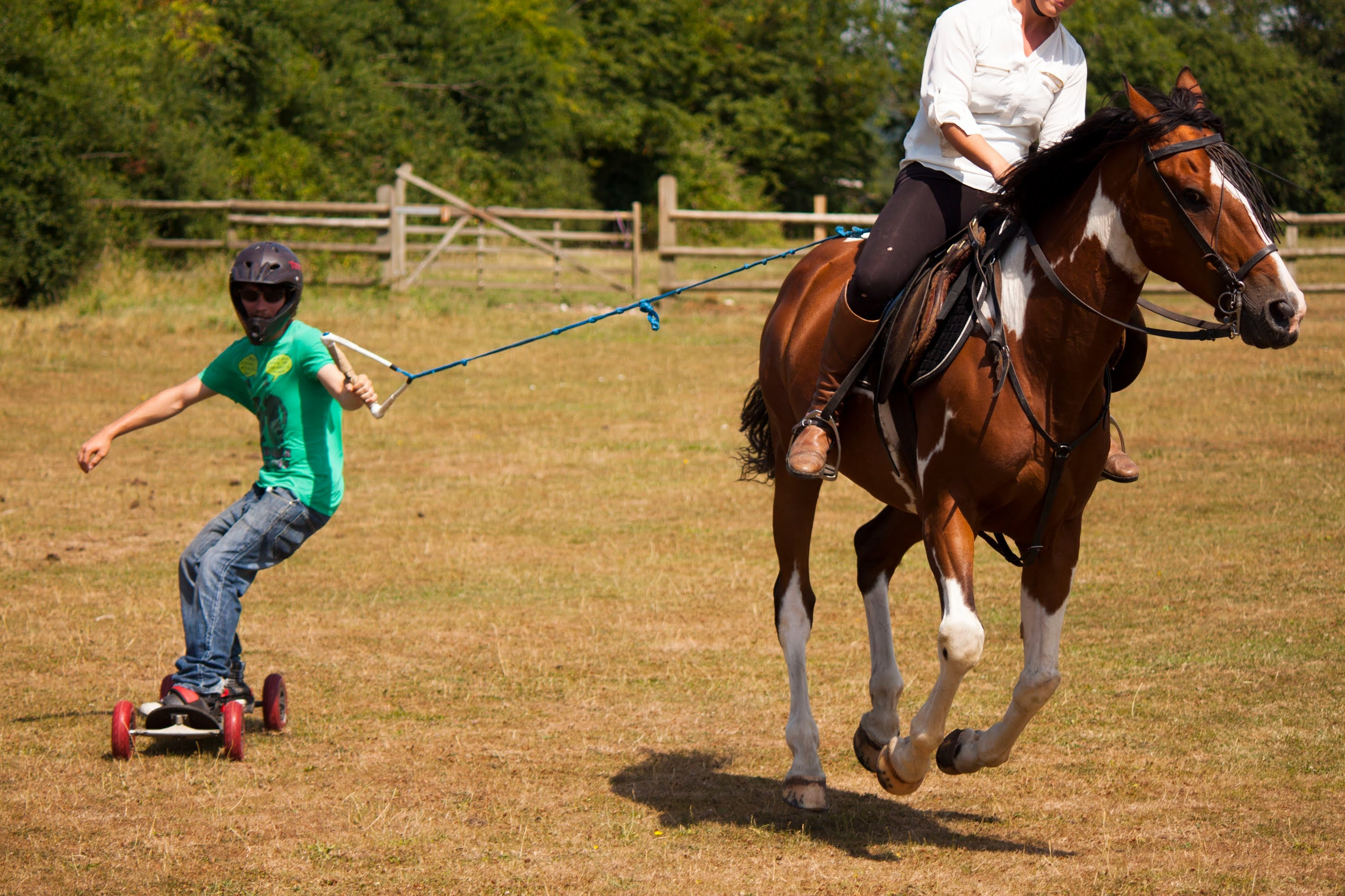 Get the best horse riding training at Roachdale IN